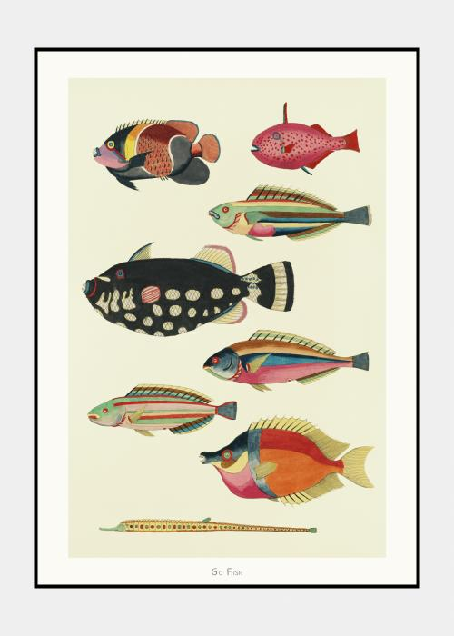 Go Fish no. 2 - plakat i ramme