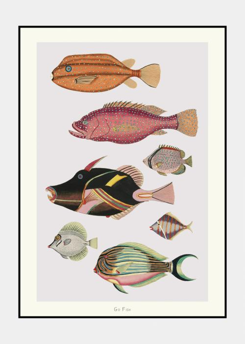 Go Fish no. 4 - plakat i ramme